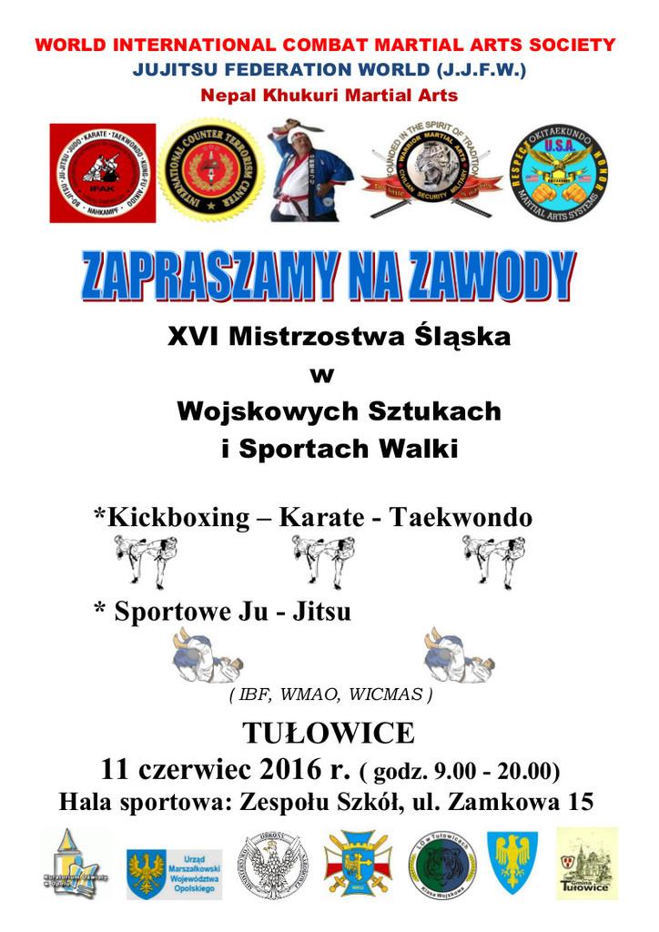 XVI Mistrzostwa Śląska w Wojskowych Sztukach i Sportach Walki.jpeg