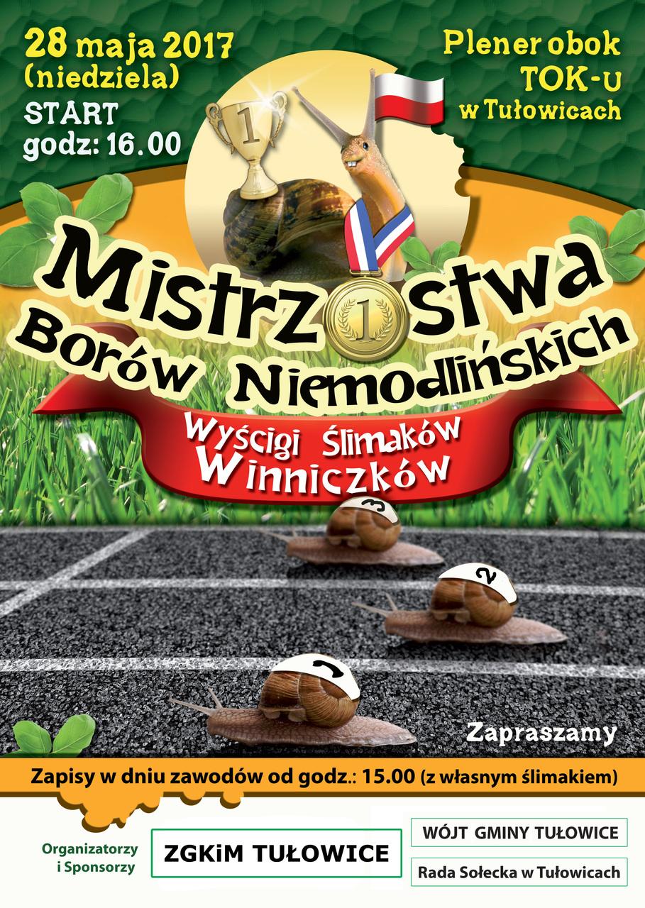 Mistrzostwa Borów Niemodlińskich 2017.jpeg