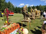 Galeria Dożynki 2011 - Skarbiszowice